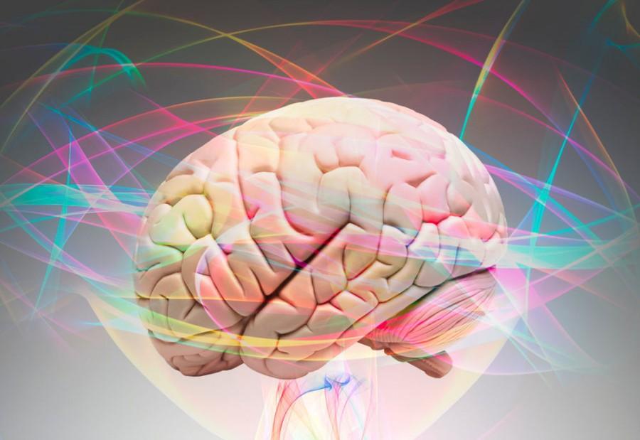 Методики стимулирования работы мозга. Активизация межполушарного взаимодействия.